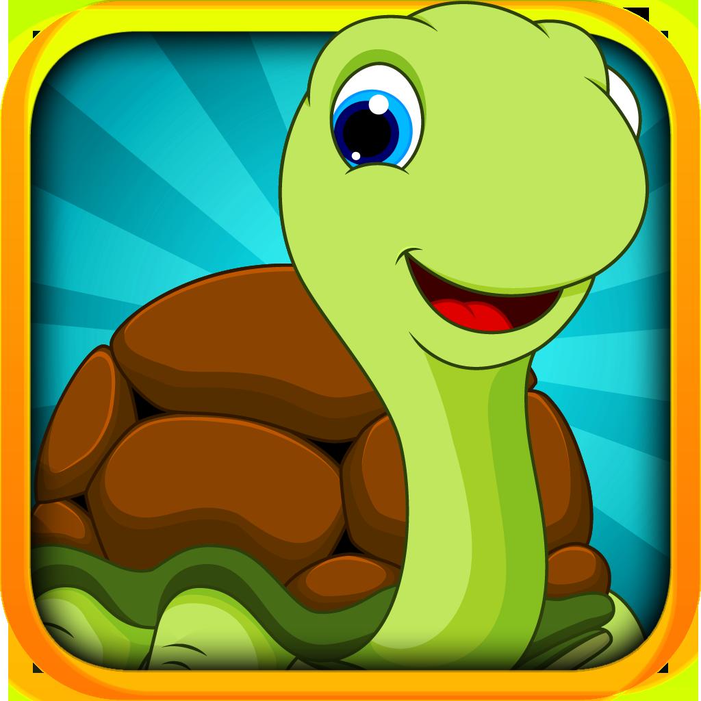 Baby Turtle Flying Adventure